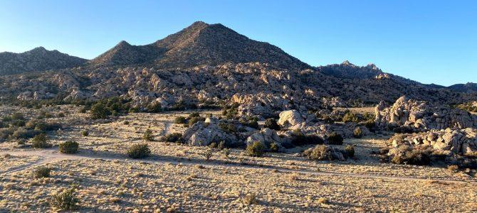 Mojave Desert 2021